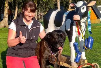 Na velikonočním Mondioring Tournamentu v Mohelnici soutěžilo 44 kynologů a psů