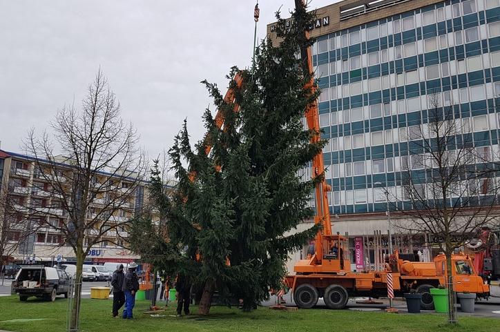 Ulice Vsetína rozzáří šest vánočních stromů
